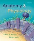 EBK ANATOMY & PHYSIOLOGY - 6th Edition - by Hoehn - ISBN 8220103453318