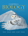 EBK CAMPBELL BIOLOGY:CONCEPTS+CONNECT. - 8th Edition - by Reece - ISBN 9780133890310