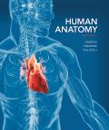 EBK HUMAN ANATOMY - 8th Edition - by Martini - ISBN 9780133936636